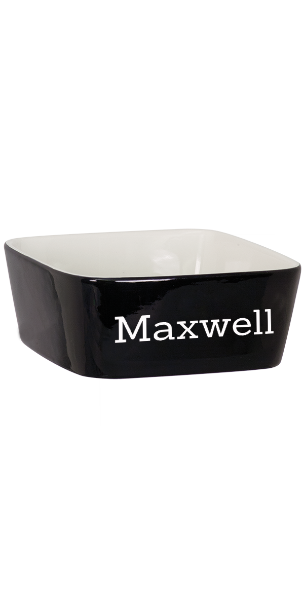 Custom Engraved Maxwell Pet Bowl Large