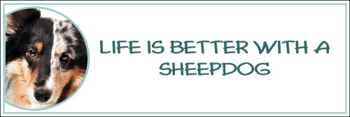 Life is Better with a Sheepdog